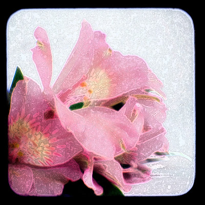 Sample ttv lillies with ink